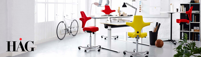 HAG Ergonomic Seating in the workplace