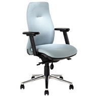 Reflex High Back Ergonomic Chair with Armrests - Black