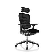 Ergohuman Plus Elite Armchair Mesh Seat Back & Headrest