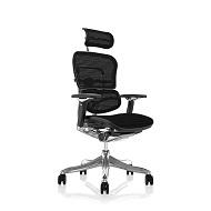 Ergohuman Plus Luxury Armchair Mesh Seat Back & Headrest